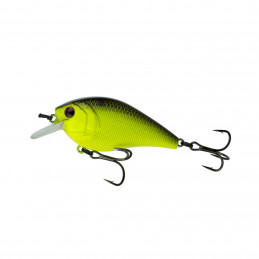 "2.25"" 2-5ft Chartreuse..."