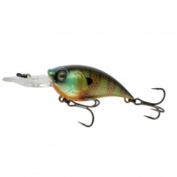 "2.25"" 5-9ft Bluegill Fire..."