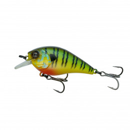 "2.25"" 2-5ft Mud Gill Crush..."