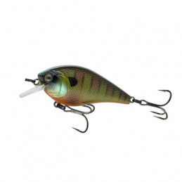 "2.25"" 2-5ft Bluegill Fire..."