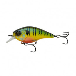 "3.25"" 3-7ft Mud Gill Cloud..."