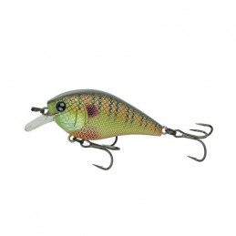 "2.25"" 2-5ft Spring Bluegill..."