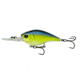 """2.56"""" 4-8ft Chartreuse Pro..."""