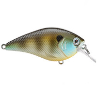 Shallow Diving Crankbaits